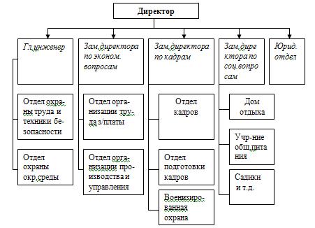 Место службы управления персоналом в структуре организации.